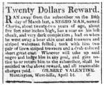 Runaway Ad Long-Island Star April 27,1814